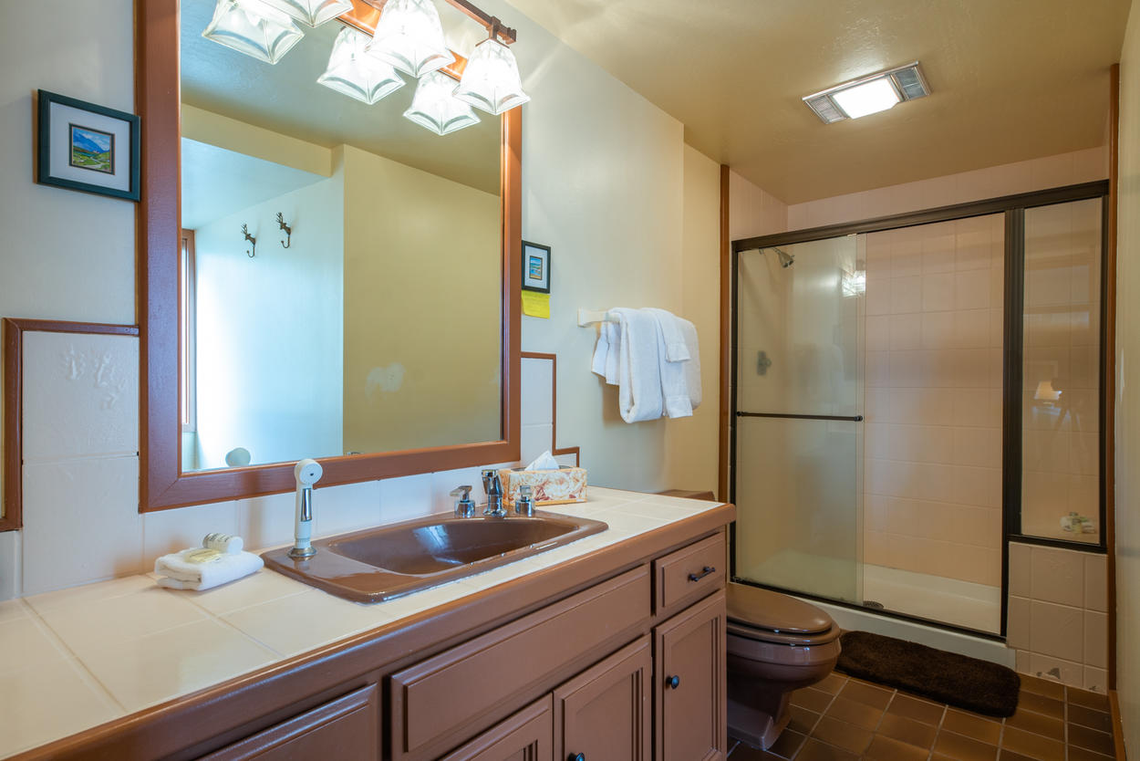 The master ensuite has a stand-alone shower for warming up after a day out on the ski hill